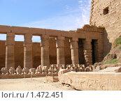 Купить «Древний Египетский храм», фото № 1472451, снято 21 октября 2006 г. (c) Кардаков Алексей Игоревич / Фотобанк Лори