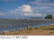 Купить «Причал в Петергофе, вид со стороны парка», фото № 1481043, снято 28 июля 2009 г. (c) Николай Богоявленский / Фотобанк Лори