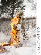 Купить «Масленица, сжигание чучела», фото № 1481815, снято 13 февраля 2010 г. (c) Андрей Некрасов / Фотобанк Лори