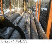 Деловая древесина. Стоковое фото, фотограф Валерий Нестеров / Фотобанк Лори