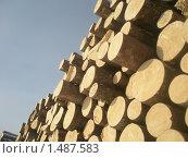 Штабель деловой древесины. Стоковое фото, фотограф Валерий Нестеров / Фотобанк Лори