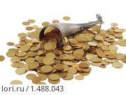 Купить «Рог изобилия с монетами», фото № 1488043, снято 2 декабря 2009 г. (c) Курганов Александр / Фотобанк Лори