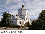 Православный храм. Город Сызрань (2009 год). Стоковое фото, фотограф Елена Воронова / Фотобанк Лори