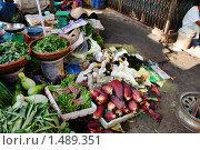 Купить «Вьетнамский рынок», фото № 1489351, снято 10 января 2010 г. (c) Лифанцева Елена / Фотобанк Лори