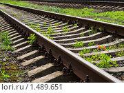 Железная дорога. Стоковое фото, фотограф Евгений Ореховский / Фотобанк Лори
