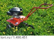 Мини трактор на цветущем лугу. Стоковое фото, фотограф Sergii Korshun / Фотобанк Лори