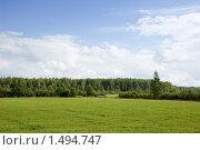 Купить «Летний день. Цветущий луг.», фото № 1494747, снято 10 августа 2008 г. (c) Катыкин Сергей / Фотобанк Лори