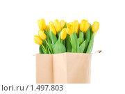 Купить «Букет тюльпанов в бумажном пакете», фото № 1497803, снято 15 февраля 2010 г. (c) Виталий Радунцев / Фотобанк Лори