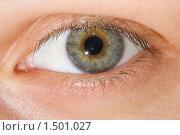 Человеческий глаз. Стоковое фото, фотограф Евгений Гультяев / Фотобанк Лори