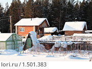 Купить «Дачный поселок зимой. Тюменская область.», фото № 1501383, снято 22 февраля 2010 г. (c) Алексей Рогожа / Фотобанк Лори