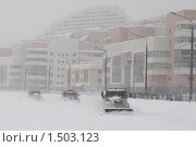 Купить «Снежная московская зима 2010 года», фото № 1503123, снято 22 февраля 2010 г. (c) Яременко Екатерина / Фотобанк Лори