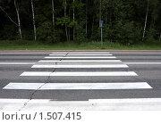 Купить «Пешеходный переход на загородной дороге», фото № 1507415, снято 15 июня 2008 г. (c) Юрий Синицын / Фотобанк Лори