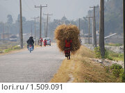 Ноша. Стоковое фото, фотограф Дмитрий Ващенко / Фотобанк Лори