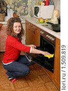 Купить «Девушка, чистящая встроенную духовку», фото № 1509819, снято 14 февраля 2010 г. (c) Дмитрий Яковлев / Фотобанк Лори