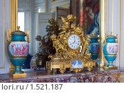 Купить «Старинные каминные часты», фото № 1521187, снято 23 декабря 2007 г. (c) Дмитрий Ковязин / Фотобанк Лори