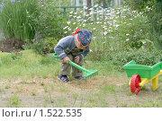 Купить «Мальчик граблями помогает убирать скошенную траву», фото № 1522535, снято 21 июня 2008 г. (c) Михаил Борсов / Фотобанк Лори