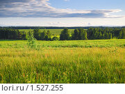 Купить «Летний пейзаж», эксклюзивное фото № 1527255, снято 8 июня 2009 г. (c) Алёшина Оксана / Фотобанк Лори