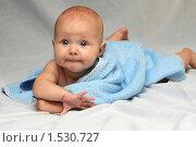Купить «Малышка», фото № 1530727, снято 5 августа 2008 г. (c) Юлия Шилова / Фотобанк Лори