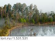 Купить «Лесное озеро с испарениями от воды», фото № 1531531, снято 12 июня 2009 г. (c) Кекяляйнен Андрей / Фотобанк Лори