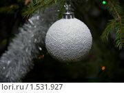 Купить «Шар на новогодней ёлке», фото № 1531927, снято 27 декабря 2009 г. (c) Андрей Лабутин / Фотобанк Лори