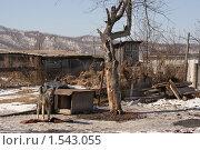 Купить «Деревенская весна», фото № 1543055, снято 7 марта 2010 г. (c) Карманова Валерия / Фотобанк Лори