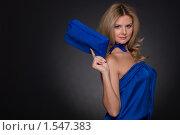 Купить «Портрет красивой женщины в синем костюме и сумочкой», фото № 1547383, снято 4 декабря 2009 г. (c) Александр Маркин / Фотобанк Лори