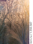 Купить «Ледяной фон», фото № 1550587, снято 27 января 2010 г. (c) Кравецкий Геннадий / Фотобанк Лори