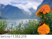 Купить «Весенний пейзаж», фото № 1552219, снято 18 августа 2009 г. (c) Виталий Романович / Фотобанк Лори