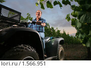 Купить «Фермер в винограднике», фото № 1566951, снято 14 июля 2008 г. (c) Константин Сутягин / Фотобанк Лори