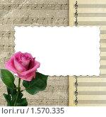 Открытка для фото с розой. Стоковая иллюстрация, иллюстратор Gatteriya / Фотобанк Лори