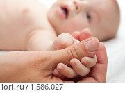 Купить «Малыш держит родителя за палец», фото № 1586027, снято 20 июля 2009 г. (c) Руслан Керимов / Фотобанк Лори
