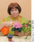 Женщина ухаживает за комнатными цветами. Стоковое фото, фотограф Юрий Морозов / Фотобанк Лори