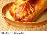 Купить «Русский пирог кулебяка с начинкой», фото № 1589283, снято 7 августа 2009 г. (c) ElenArt / Фотобанк Лори