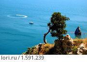 Вид на море. Стоковое фото, фотограф Пасечник Игорь / Фотобанк Лори