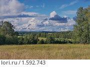 Купить «Сельский пейзаж», фото № 1592743, снято 30 июля 2008 г. (c) Николай Богоявленский / Фотобанк Лори