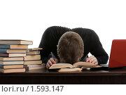 Купить «Молодой человек уснул, сидя за столом среди книг и ноутбука, на белом фоне», фото № 1593147, снято 3 февраля 2010 г. (c) Мельников Дмитрий / Фотобанк Лори
