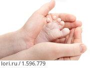Купить «Детская ножка в маминых руках», фото № 1596779, снято 28 февраля 2010 г. (c) Кирилл Половной / Фотобанк Лори