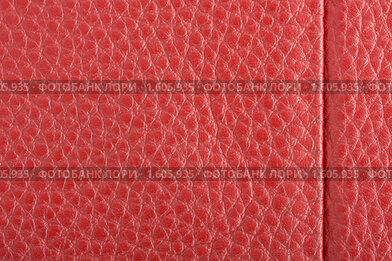 Купить «Красная кожа», фото № 1605935, снято 4 апреля 2010 г. (c) Алексей Климков / Фотобанк Лори