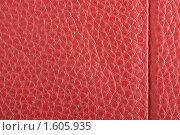 Красная кожа. Стоковое фото, фотограф Алексей Климков / Фотобанк Лори