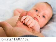 Детская рука на ладони отца. Стоковое фото, фотограф Игорь Губарев / Фотобанк Лори