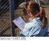 Девушка рисует. Стоковое фото, фотограф sfsfs / Фотобанк Лори
