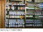 Купить «Магазин крымских вин в поселке Новый Свет», эксклюзивное фото № 1607863, снято 28 августа 2008 г. (c) Щеголева Ольга / Фотобанк Лори
