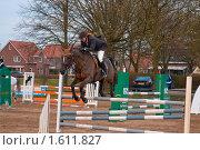 Девушка-жокей на коне преодолевает препятствие, вид спереди (2010 год). Редакционное фото, фотограф Василий Шульга / Фотобанк Лори