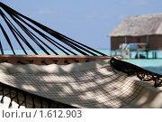 Гамак. Стоковое фото, фотограф Дмитрий Краснов / Фотобанк Лори
