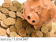 Купить «Монеты и свинья-копилка», фото № 1614947, снято 7 апреля 2010 г. (c) Андрей Лавренов / Фотобанк Лори