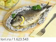 Купить «Рыба, запеченная в фольге и вареный картофель с зеленью», эксклюзивное фото № 1623543, снято 6 апреля 2010 г. (c) Лидия Рыженко / Фотобанк Лори