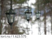 Три фонаря на фоне леса. Стоковое фото, фотограф Данила Игнатович / Фотобанк Лори