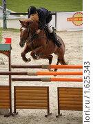 Купить «Хрустальное седло-2009. Маршрут 140 см. Римус Римкус (Литва) на лошади по кличке Фиатас.», фото № 1625343, снято 18 сентября 2009 г. (c) Устинова Мария / Фотобанк Лори