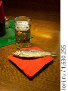 Кружка пива (2010 год). Редакционное фото, фотограф Александр Жучков / Фотобанк Лори