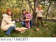 Купить «Мама с дочерью, сыном и дедушкой собирают яблоки в саду», фото № 1642871, снято 8 октября 2009 г. (c) Losevsky Pavel / Фотобанк Лори